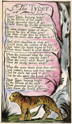 an analysis of william blakes the lamb and the tyger Compare and contrast of two poems ariel rose in comparing and contrasting william blake's the tyger and the lamb  the analysis of william blake's 'the tyger .