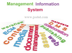 Management-Information-System