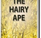 The Hairy Ape 2